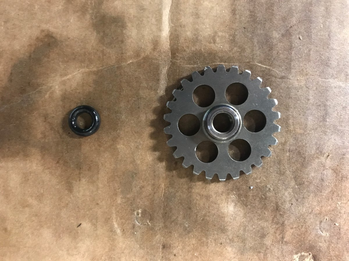 Gear and O-Ring.JPG